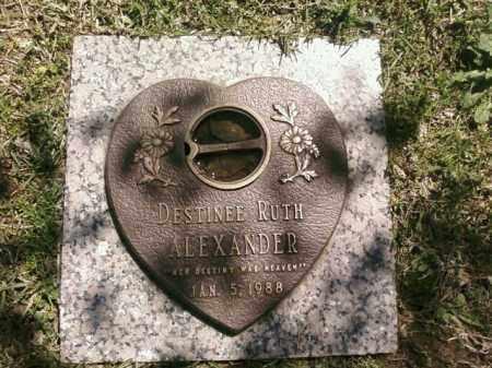 ALEXANDER, DESTINEE RUTH - Saline County, Arkansas | DESTINEE RUTH ALEXANDER - Arkansas Gravestone Photos