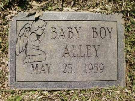 ALLEY, BABY BOY - Saline County, Arkansas | BABY BOY ALLEY - Arkansas Gravestone Photos
