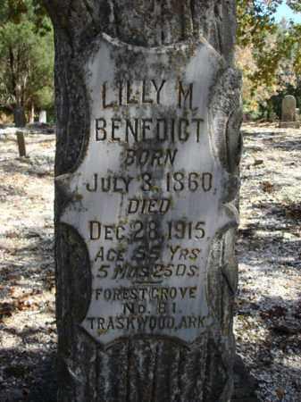 BENEDICT, LILLY M. - Saline County, Arkansas | LILLY M. BENEDICT - Arkansas Gravestone Photos