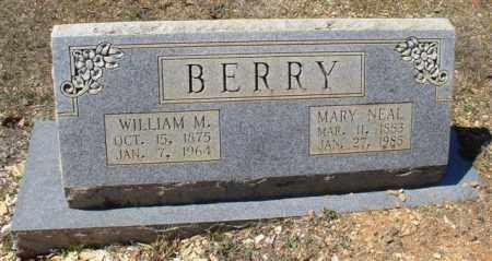 BERRY, WILLIAM M. - Saline County, Arkansas | WILLIAM M. BERRY - Arkansas Gravestone Photos