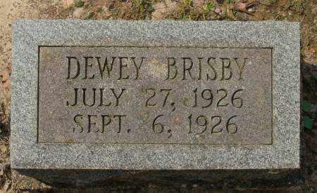 BRISBY, DEWEY - Saline County, Arkansas   DEWEY BRISBY - Arkansas Gravestone Photos