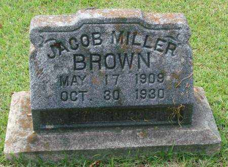 BROWN, JACOB MILLER - Saline County, Arkansas | JACOB MILLER BROWN - Arkansas Gravestone Photos