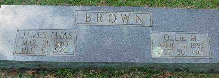 BROWN, JAMES ELIAS - Saline County, Arkansas | JAMES ELIAS BROWN - Arkansas Gravestone Photos