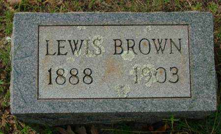 BROWN, LEWIS - Saline County, Arkansas | LEWIS BROWN - Arkansas Gravestone Photos