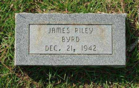 BYRD, JAMES RILEY - Saline County, Arkansas   JAMES RILEY BYRD - Arkansas Gravestone Photos