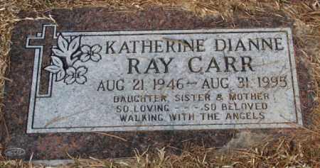 CARR, KATHERINE DIANNE - Saline County, Arkansas | KATHERINE DIANNE CARR - Arkansas Gravestone Photos