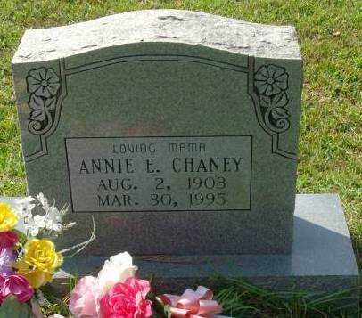 CHANEY, ANNIE E. - Saline County, Arkansas | ANNIE E. CHANEY - Arkansas Gravestone Photos