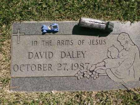 DALEY, DAVID - Saline County, Arkansas | DAVID DALEY - Arkansas Gravestone Photos