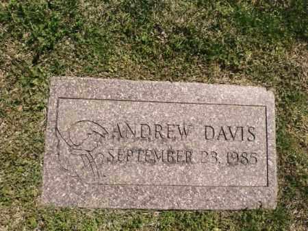 DAVIS, ANDREW - Saline County, Arkansas   ANDREW DAVIS - Arkansas Gravestone Photos