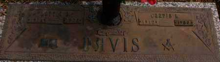 DAVIS, LOTTIE S. - Saline County, Arkansas | LOTTIE S. DAVIS - Arkansas Gravestone Photos