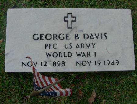 DAVIS  (VETERAN WWI), GEORGE B - Saline County, Arkansas | GEORGE B DAVIS  (VETERAN WWI) - Arkansas Gravestone Photos