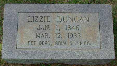 DUNCAN, LIZZIE - Saline County, Arkansas | LIZZIE DUNCAN - Arkansas Gravestone Photos