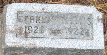 ELLIS, GEARLDINE - Saline County, Arkansas | GEARLDINE ELLIS - Arkansas Gravestone Photos