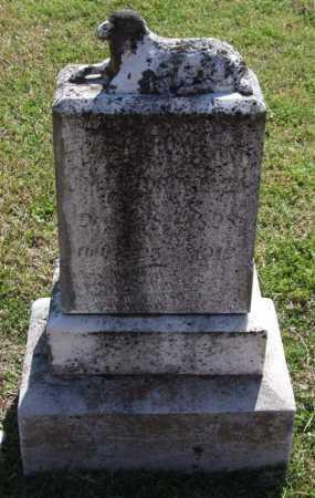 ELZA, ELBERT ROWLAND - Saline County, Arkansas   ELBERT ROWLAND ELZA - Arkansas Gravestone Photos