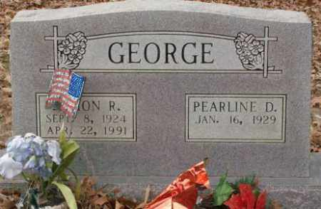 GEORGE, DAMON R. - Saline County, Arkansas | DAMON R. GEORGE - Arkansas Gravestone Photos