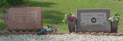 GREEN, CHARLES W. - Saline County, Arkansas   CHARLES W. GREEN - Arkansas Gravestone Photos