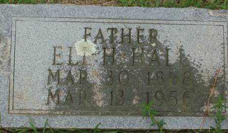 HALE, ELI H. - Saline County, Arkansas | ELI H. HALE - Arkansas Gravestone Photos