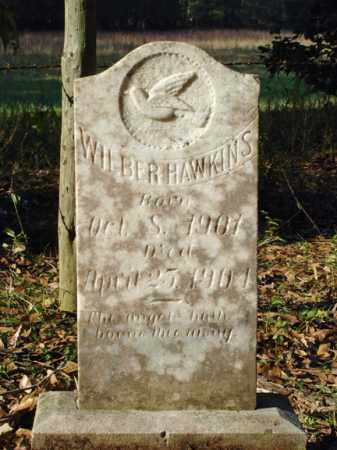 HAWKINS, WILBER - Saline County, Arkansas | WILBER HAWKINS - Arkansas Gravestone Photos