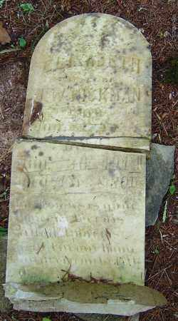 LINDSEY HICKMAN, ELIZABETH - Saline County, Arkansas | ELIZABETH LINDSEY HICKMAN - Arkansas Gravestone Photos