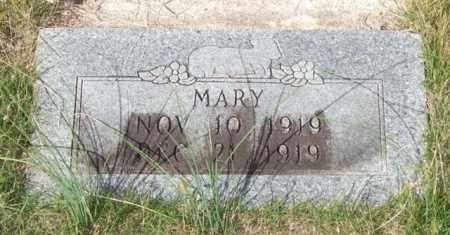 HICKS, MARY - Saline County, Arkansas | MARY HICKS - Arkansas Gravestone Photos