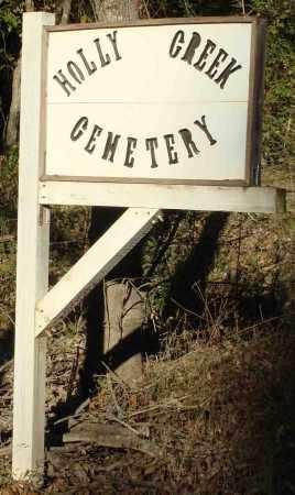 HOLLY CREEK, CEMETERY - Saline County, Arkansas | CEMETERY HOLLY CREEK - Arkansas Gravestone Photos