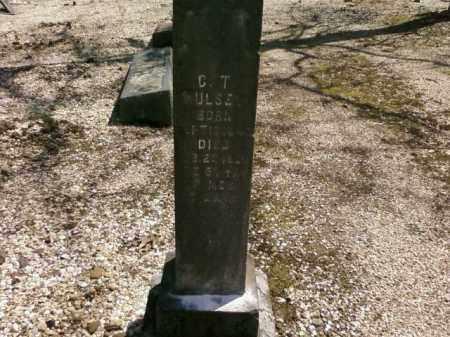 HULSEY, C.T. - Saline County, Arkansas | C.T. HULSEY - Arkansas Gravestone Photos