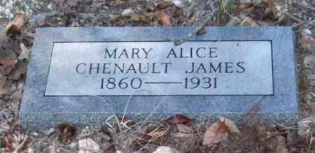 JAMES, MARY ALICE - Saline County, Arkansas | MARY ALICE JAMES - Arkansas Gravestone Photos