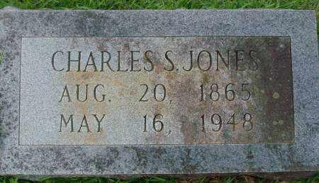 JONES, CHARLES - Saline County, Arkansas | CHARLES JONES - Arkansas Gravestone Photos