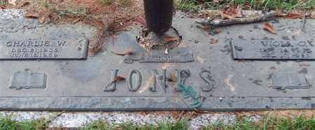 JONES, VIOLA O. - Saline County, Arkansas | VIOLA O. JONES - Arkansas Gravestone Photos