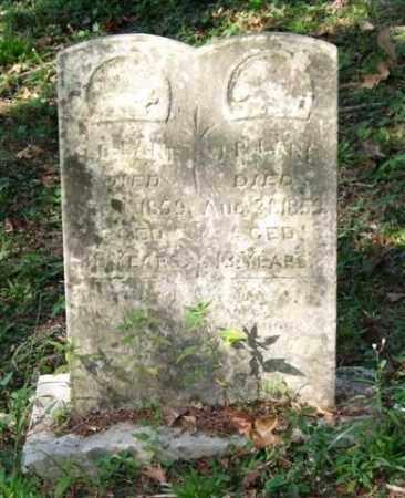 LANE, J. P. - Saline County, Arkansas   J. P. LANE - Arkansas Gravestone Photos