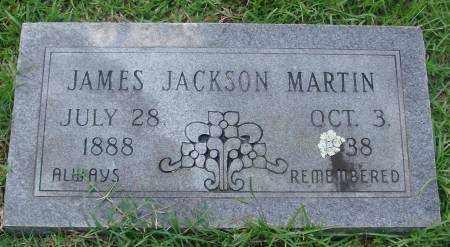 MARTIN, JAMES - Saline County, Arkansas   JAMES MARTIN - Arkansas Gravestone Photos