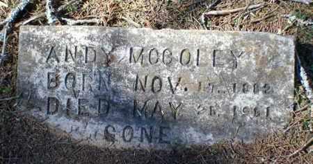 MCCOLEY, ANDY - Saline County, Arkansas | ANDY MCCOLEY - Arkansas Gravestone Photos