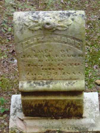 MCKEOWN, ELIZA JANE - Saline County, Arkansas | ELIZA JANE MCKEOWN - Arkansas Gravestone Photos