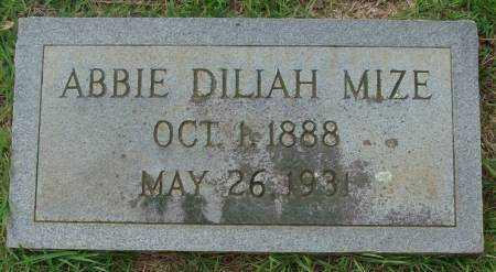 MIZE, ABBIE DILIAH - Saline County, Arkansas | ABBIE DILIAH MIZE - Arkansas Gravestone Photos