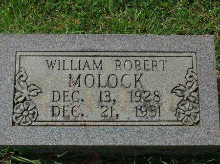 MOLOCK, WILLIAM - Saline County, Arkansas | WILLIAM MOLOCK - Arkansas Gravestone Photos