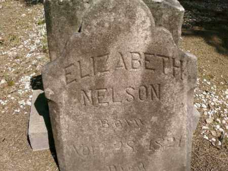 NELSON, ELIZABETH - Saline County, Arkansas | ELIZABETH NELSON - Arkansas Gravestone Photos