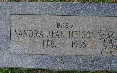 NELSON, SANDRA JEAN - Saline County, Arkansas | SANDRA JEAN NELSON - Arkansas Gravestone Photos