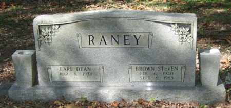 RANEY, BROWN STEVEN - Saline County, Arkansas | BROWN STEVEN RANEY - Arkansas Gravestone Photos