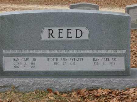 REED, JR, DAN CARL - Saline County, Arkansas | DAN CARL REED, JR - Arkansas Gravestone Photos