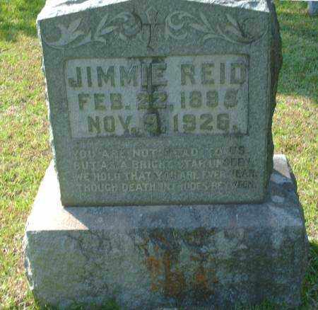 REID, JIMMIE - Saline County, Arkansas | JIMMIE REID - Arkansas Gravestone Photos