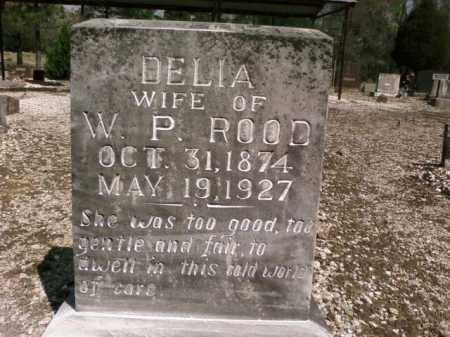 ROOD, DELIA - Saline County, Arkansas   DELIA ROOD - Arkansas Gravestone Photos