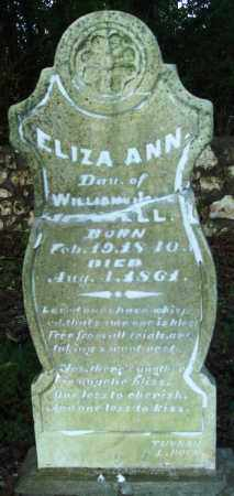 RUSSELL, ELIZA ANN - Saline County, Arkansas   ELIZA ANN RUSSELL - Arkansas Gravestone Photos