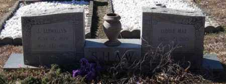 SHAW, LIDDIE MAE - Saline County, Arkansas | LIDDIE MAE SHAW - Arkansas Gravestone Photos