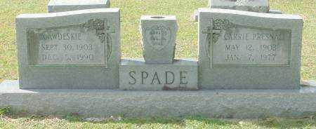 SPADE, CAWDESKIE - Saline County, Arkansas   CAWDESKIE SPADE - Arkansas Gravestone Photos