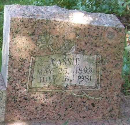 SPEARS, CASSIE (CLOSEUP) - Saline County, Arkansas   CASSIE (CLOSEUP) SPEARS - Arkansas Gravestone Photos