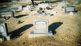 SPEER, JR, DALTON - Saline County, Arkansas   DALTON SPEER, JR - Arkansas Gravestone Photos