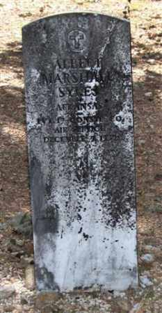 SYKES (VETERAN), ALBERT MARSHALL - Saline County, Arkansas | ALBERT MARSHALL SYKES (VETERAN) - Arkansas Gravestone Photos