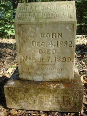 TAYLOR, HIRAM RICHARD AUSBAND - Saline County, Arkansas | HIRAM RICHARD AUSBAND TAYLOR - Arkansas Gravestone Photos