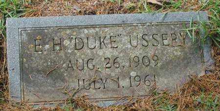 USSERY, E.H. - Saline County, Arkansas | E.H. USSERY - Arkansas Gravestone Photos