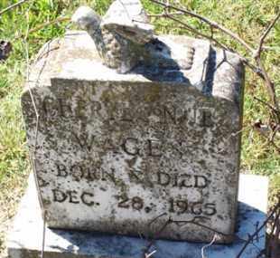 WAGES, CHERYL ANN - Saline County, Arkansas | CHERYL ANN WAGES - Arkansas Gravestone Photos